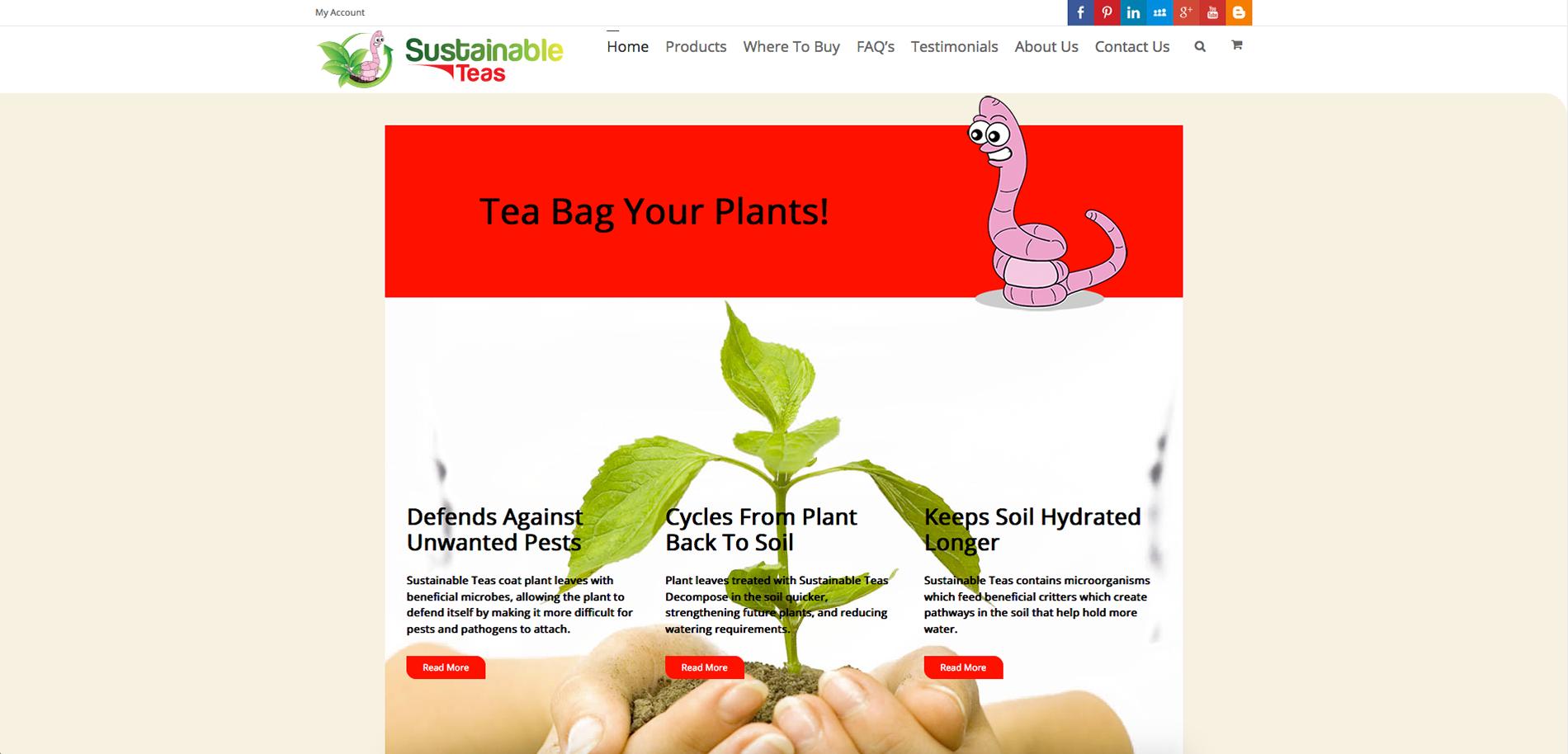 Sustainable Teas